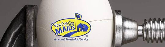 You've-Got-Maids-Systems-for-Success-Egg-Image