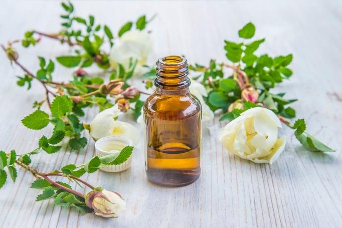 Canva - wild roses essential oil