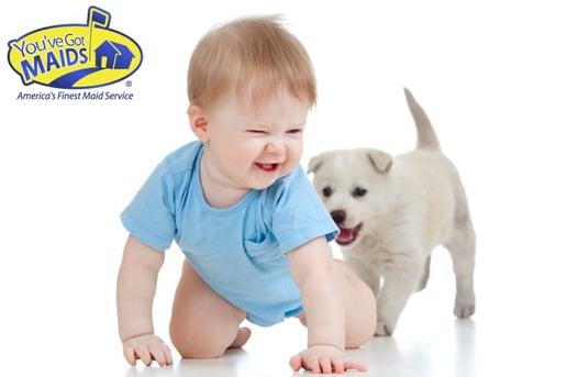child_dog_Youve_Got_MAIDS