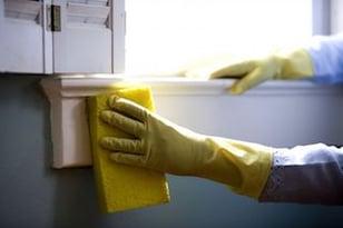 Will-my-Maids-Wash-the-Windows.jpg